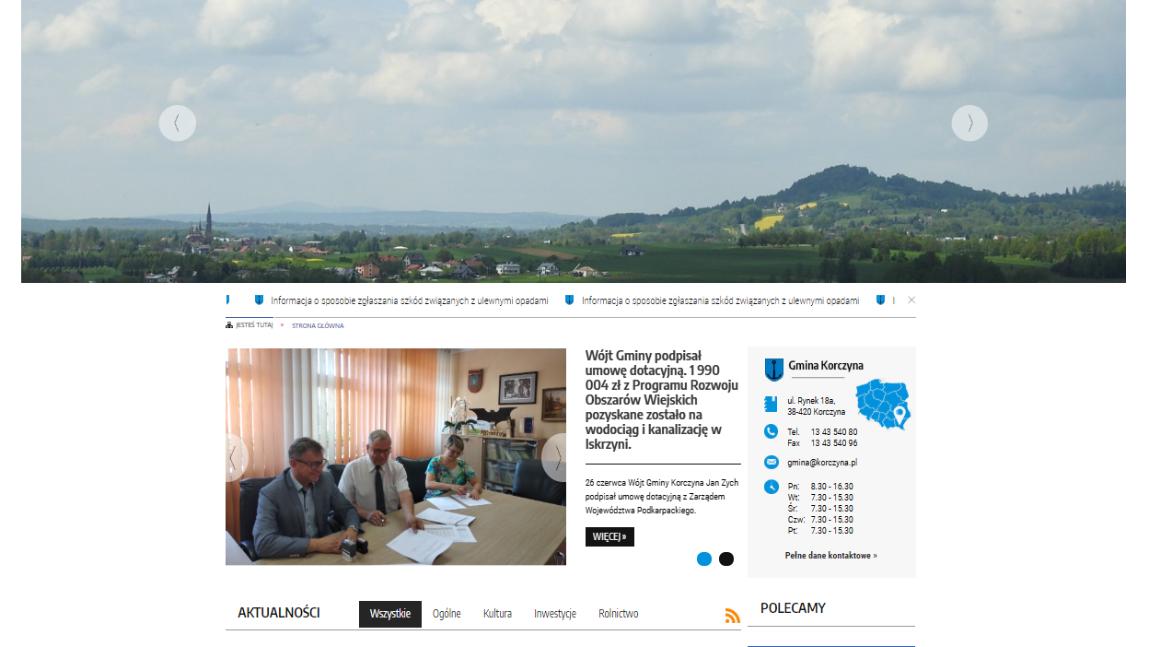 Screen strony internetowej.